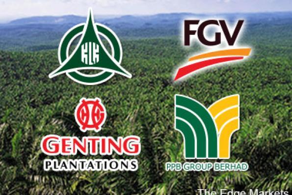 klk_fgv_genp_ppb_plantation