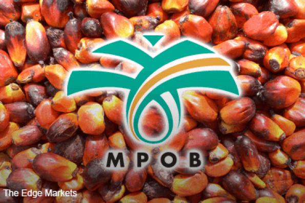 Malaysian 2017 palm oil output forecast to rise 12% y/y -MPOB