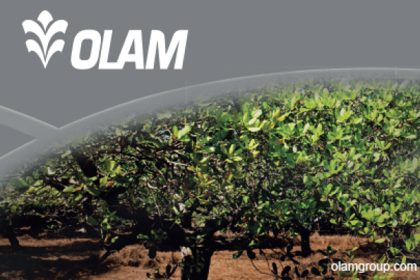 Olam's Mitsubishi cash injection to help with M&A, CEO says