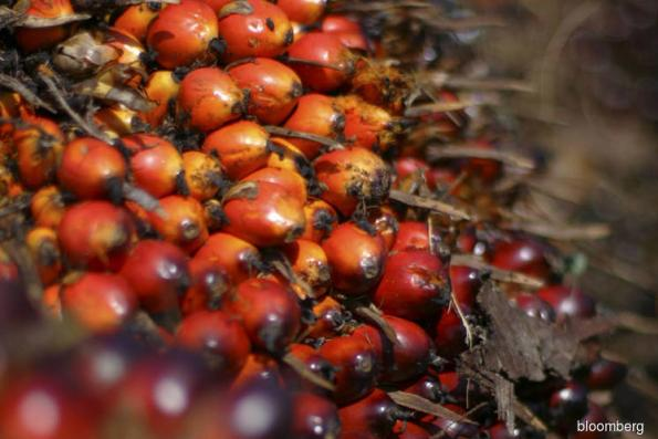 Malaysian physical palm oil prices — Nov 22 (Close)