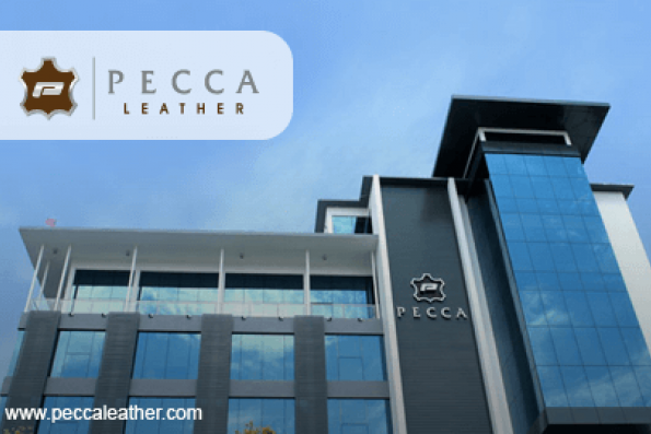 Pecca gets nod from DCA on aviation leather upholstery jobs