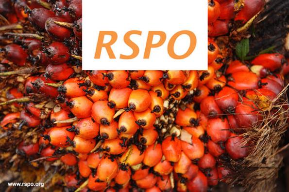 RSPO to unveil 3rd standards revision by Nov 2018
