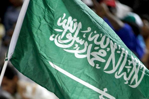 Saudi purge takes kingdom into unpredictable new era: Kemp