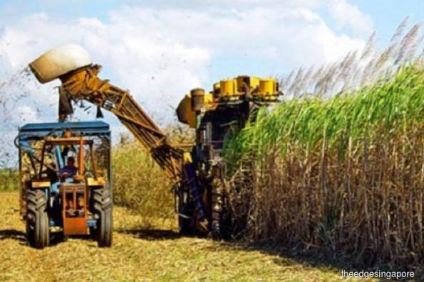 Indofood Agri in JV to acquire sugar asset in Brazil for S$26.7 mil