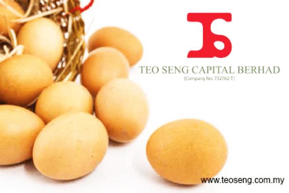 teo-seng-capital-bhd