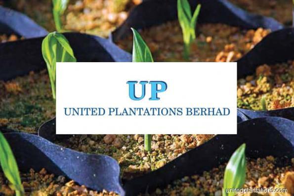 United Plantations 2Q net profit falls 22% on lower revenue