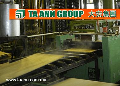 ta-ann-group