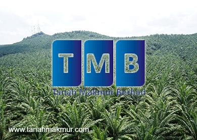Tanah Makmur confident of better earnings in FY15