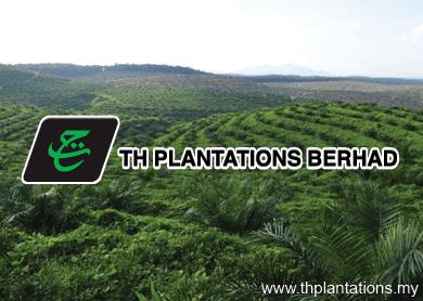 th-plantation