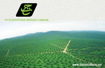 TH Plantations lowers KPIs for FY16