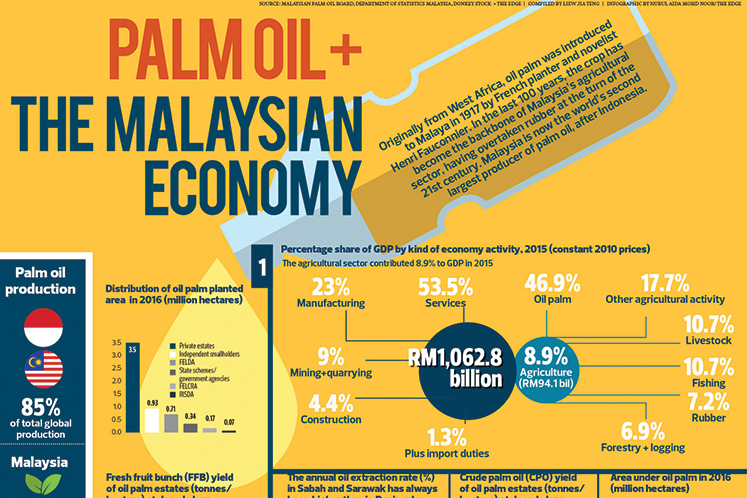 Palm oil + the Malaysian economy