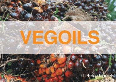 vegoil_thedgemarkets