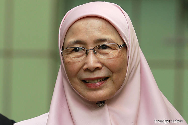 Female labour force must be utilised — Wan Azizah