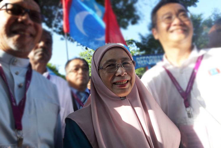 Wan Azizah, Jusuf Kalla discuss matters of mutual interest